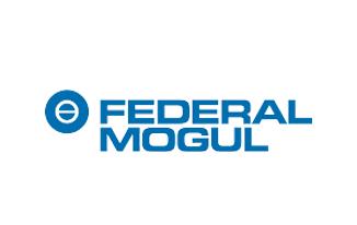 Federal Mogul 4